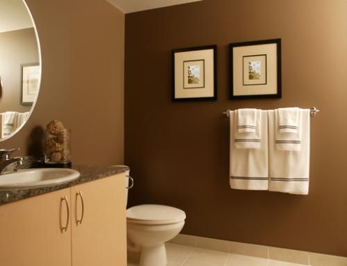 Residential Bathroom Painting
